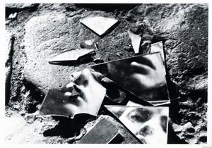 mirror-shards