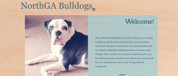 NorthGaBulldogs Home screenshot.png